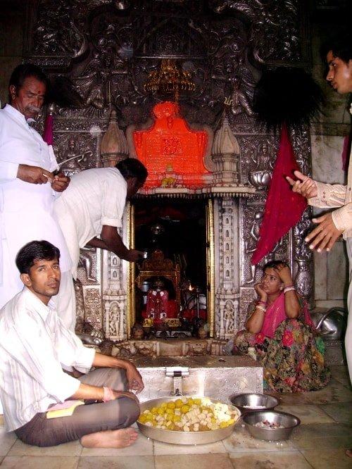 "alt=""Offerte per i topi del Karni Mata Temple"""