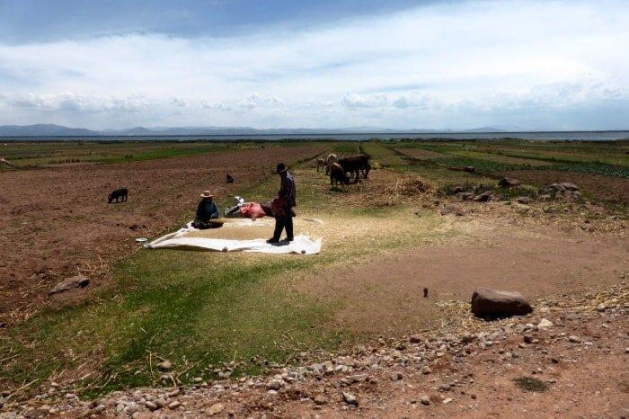 "alt=""Scorci di vita lungo il lago Titicaca"""