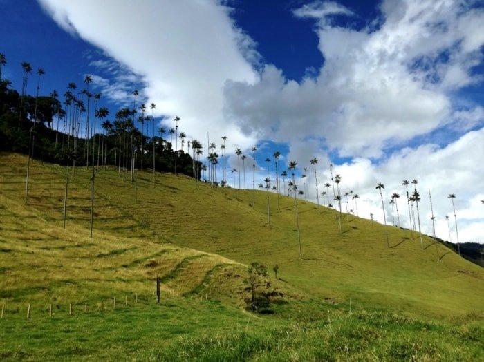 """alt=""""Colombia tutta da scoprire: la Valle del Cocora"""""""