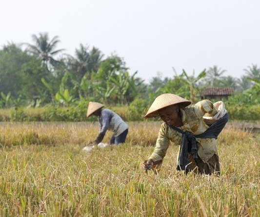 """alt=""""Viaggio di gruppo in Indonesia: Sumba, Flores e Java - foto di Laura Frasca"""""""