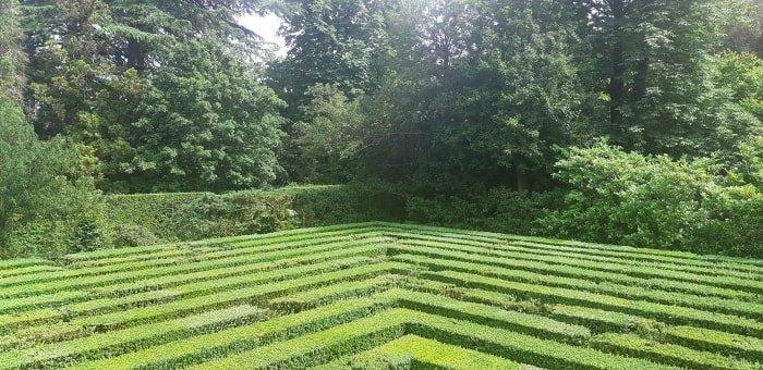 Il labirinto allegorico del Complesso Monumentale di Valsanbizio